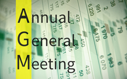 AGM Annual general meeting