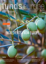 ETF_report_2017