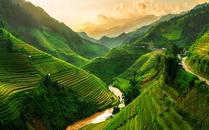 Terraced_fields_Vietnam