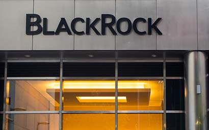 BlackRock_branch