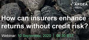 How can insurers enhance returns without credit risk?