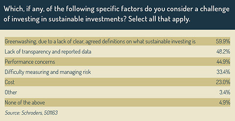 Challenges to sustainable investments