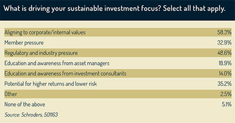 Drivers of sustainable investments