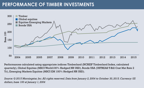Timber investments graph