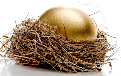 nest golden egg 410